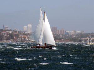 SASC Sailing